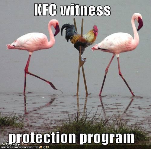 funny-pictures-kfc-chicken-stilts-flamingos.jpg
