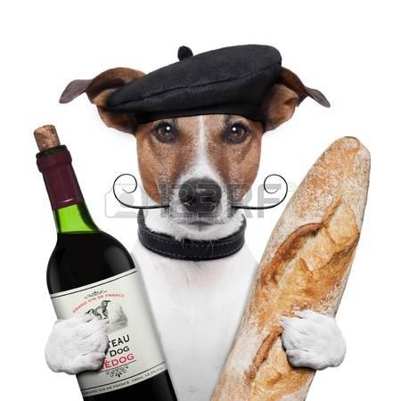 15179290-fran-ais-b-ret-baguette-chien-vin.jpg