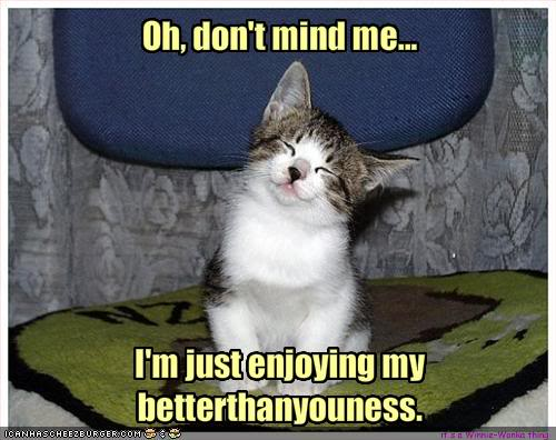 Catpicturesfunny914.jpg