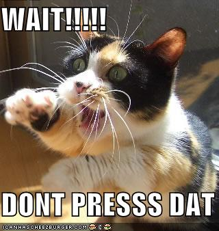 funny-pictures-cat-asks-you-to-not-press-that.jpg