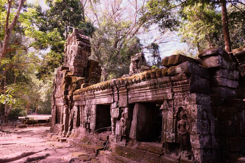 ruins-medieval-house-rainforest-ancient-jungle-cambodia-148277347.jpg